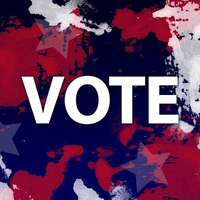 Volby v karanténě